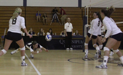 Volleyball Shulman web