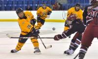 Kate Wheeler passes the puck in Saturday's game vs. Harvard.