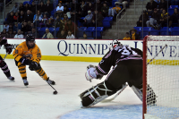 Quinnipiac 4, Brown 1  Quinnipiac's Clay Harvey skates towards Brown goalie Marco De Filippo.