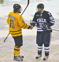 Quinnipiac 2, Yale 2Quinnipiac's Scott Zurevinski and Yale's Chad Ziegler shake hands after Saturday's game.