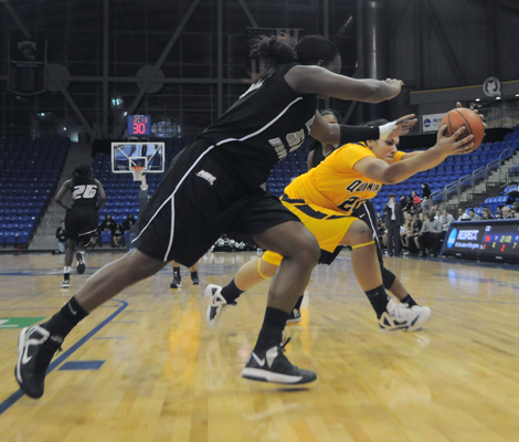 Quinnipiac 67, LIU-Brooklyn 60